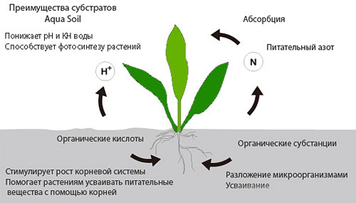 ADA Aqua Soil Powder Amazonia - грунт Амазония.