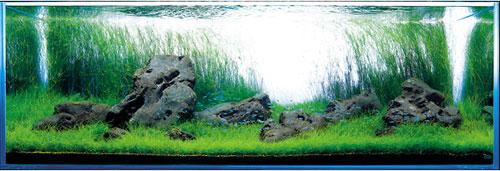 ADA Congo Sand SS - тёмный грунт для аквариумных растений.