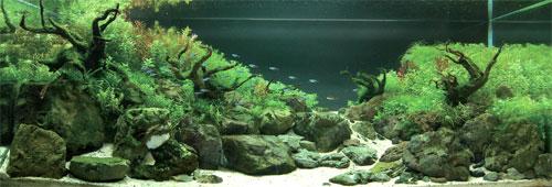 ADA Nile Sand - грунт для оформления аквариума.