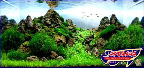 ADA Sarawak Sand - песчаный грунт в аквариум.