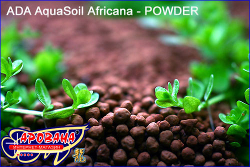ADA Aqua Soil Powder Africana - ��������� ����� ��� ���������.