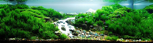 ADA Aqua Soil Powder Africana - ����������� �������� ��� ���������.