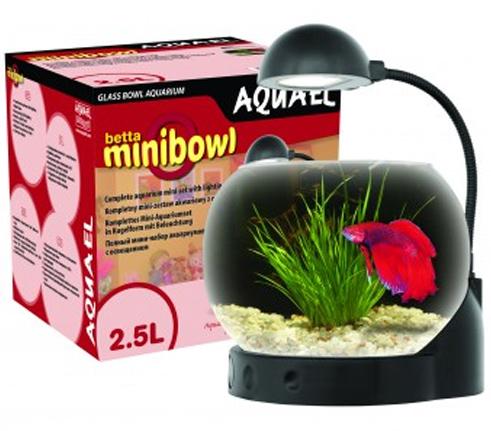 Aquael MINI BOWL - миниатюрный аквариум на подарок.