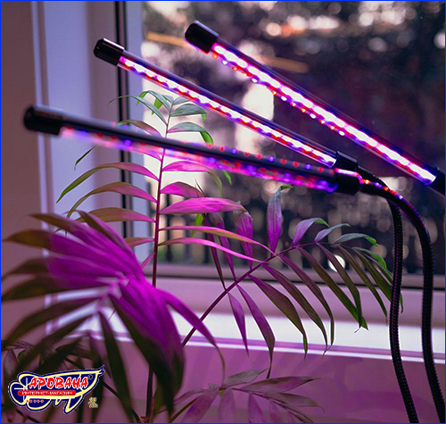 Светильник AQUAXER Led Grow Light 36W.