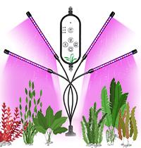 Новинка! Фитосветильник для аквариумных растений.