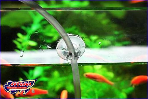 Присоска силиконовая AQUAXER, прозрачная с креплением 6 мм.
