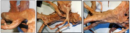 Коряга Азалия - корень Азалии для аквариума.