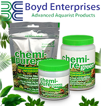 Новинка! Фильтрующие наполнители Chemi-Pure Green.