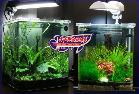 Аквариумный Нано комплект Dennerle Nano Cube Complete  небольшие размеры аквариума позволяют поставить аквариум в любом удобном месте.