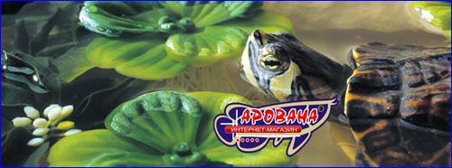 Растения Exo-Terra Water Hyacinth с трудом можно отличить от живых. Растения не только украшают террариум и создают дополнительные укрытия для его обитателей