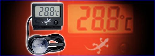 Exo Terra Digital Thermo-Hygrometer комбинированный термометр и гигрометр для измерения температуры и влажности.