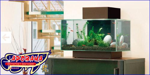 Hagen Fluval EDGE, - инновационный, совершенно невообразимый, стильный нано-аквариум.