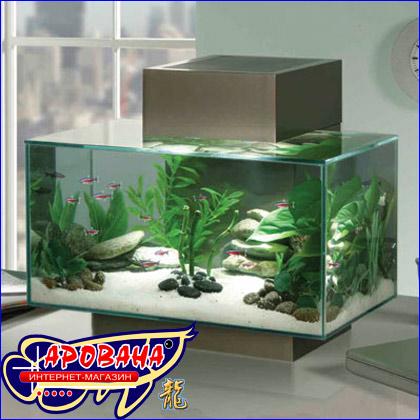 Hagen Fluval Edge Aquarium Set, - инновационный, совершенно невообразимый, стильный нано-аквариум.