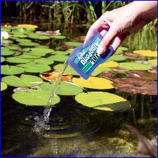 Препарат JBL AlgoPond rapid для эффективной борьбы с водорослями в прудовой воде.