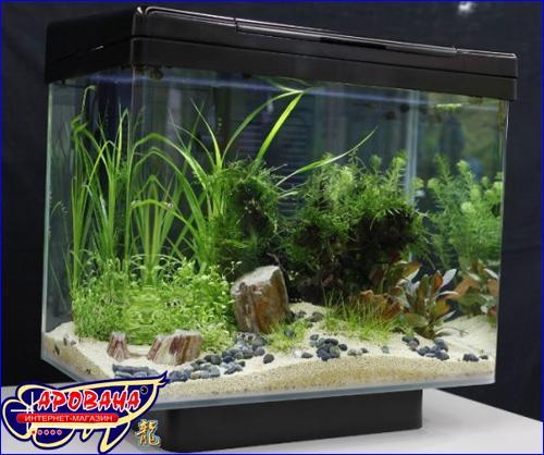 Juwel Vio 40, - нано аквариум Juwel.