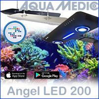 Аквариумный светильник Angel LED 200