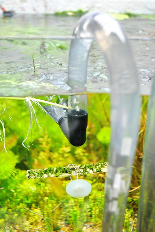 Из трубки выхода Aguael Midikani 800 идет поток воды.