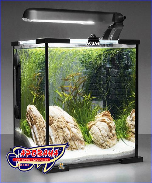 Нано аквариум для креветок.