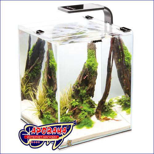Небольшой аквариум для креветок.