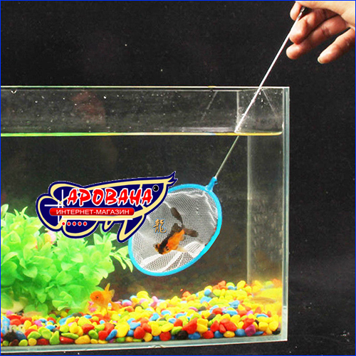 Сачок AQUAXER Shrimp L(35 см)