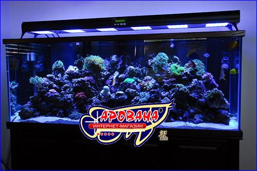 Свет в аквариум своими руками фото