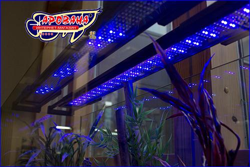 Светильник на светодиодах для аквариумных растений.