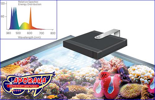 система освещения Marine & Reef Performance LED.