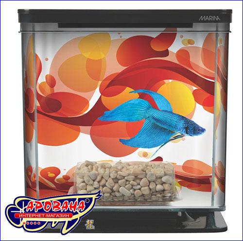 Маленький аквариум для одной рыбки.