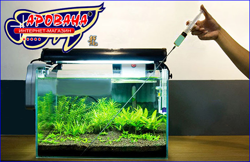 Как и чем удобрять аквариумные растения