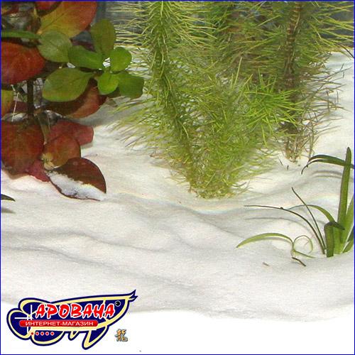 Белый песок для аквариума.