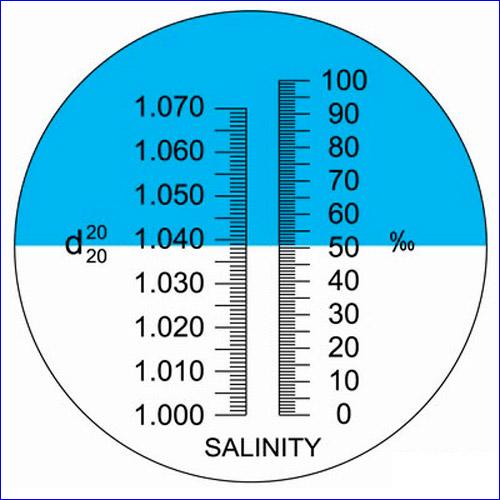 Линия с голубыми и белыми отметками – это солёность (концентрация соли в воде).