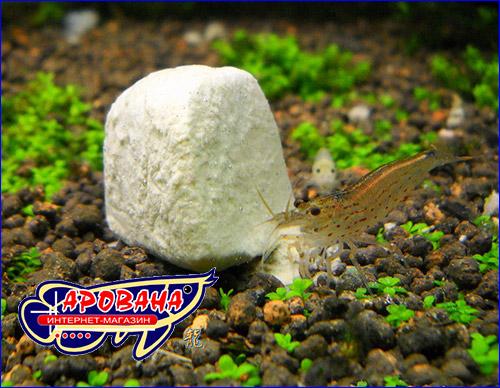 Shirakura Mineral Stone - минеральный камень, изготовленный из минерала монтмориллонит.