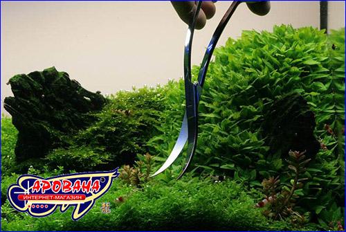 Волновые ножницы для аквариумных растений.