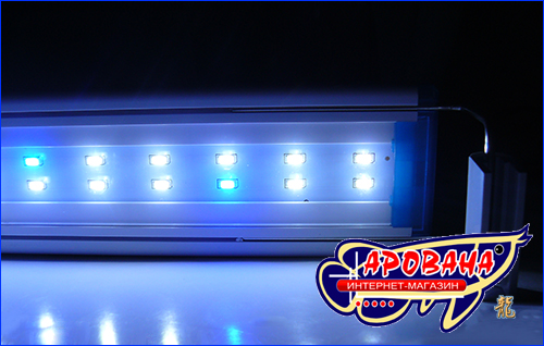 xilong led-ms40