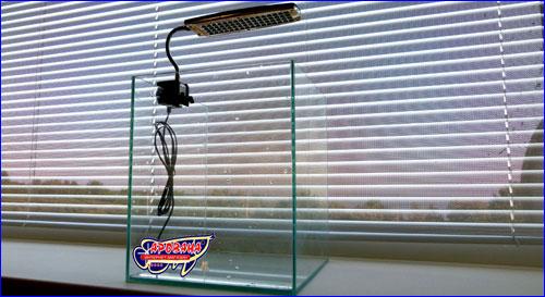 Светильник Sun Sun HMD-C4 на аквариуме с растениями