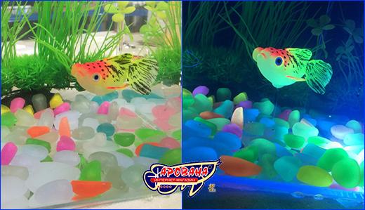 Декорация Jellyfish (рыбка телескоп).