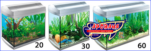 аквариумы цены фото