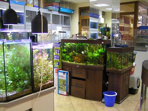 Зоо магазин, продажа аквариумов в Киеве